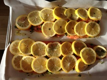 Citrus Trout photo by Camille